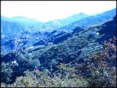 中部旅遊:楓之谷_004.JPG