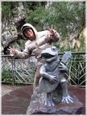 尖石鄉、秀巒村、青蛙石、薰衣草森林:青蛙石_033.JPG