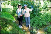 三峽風景區:紫微聖母環山步道探路_010.jpg