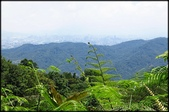 三峽風景區:紫微天后宮步道探路_059.jpg
