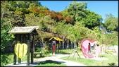 中部旅遊:楓之谷-1_016.jpg