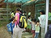 Baby家族 - 一起長大芝山綠園:IMGP3443.JPG