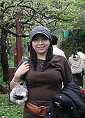 阿里山之旅:櫻花季-7