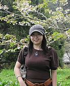 阿里山之旅:櫻花季-8