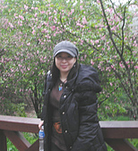 阿里山之旅:櫻花季-1