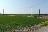 鄉村風情:P10604560.JPG