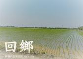 鄉村風情:P106041900.jpg