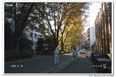 2008 東京賞楓行 -- Day 5:東京大學-4.jpg