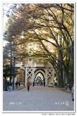 2008 東京賞楓行 -- Day 5:東京大學-10.jpg
