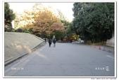 2008 東京賞楓行 -- Day 5:東京大學-16.jpg