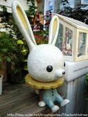 小餅干&小兔子&小花花:201.JPG