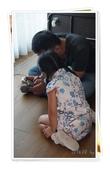 屏東+寶來+日月館3日遊:DSC00951.JPG
