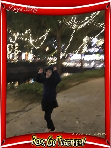 IMG_0438.JPG - 2016.11~12隨意遊