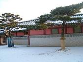 美景.機場.韓國:韓國-2