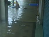 台南旅-莫拉克颱風→安南區:淹水-4