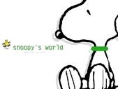 SNOOPY:SNOOPY-4