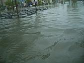 台南旅-莫拉克颱風→安南區:淹水-7