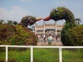 嘉南高:1051210-11旅遊照片上傳專用_5324.jpg
