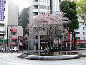 東京さんさく散策:西口公園.jpg