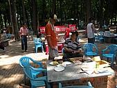 99-05-16 8大森林博覽樂園:照片 037.jp