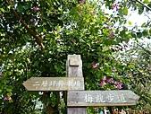 100-01-01 梅嶺和永安高爾夫球場兩日遊:P1030816.jpg