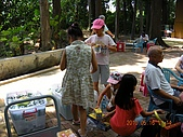99-05-16 8大森林博覽樂園:照片 041.jp