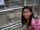 99-06-05 週末優閒逛動物園:照片 262.jp
