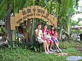 99-05-16 8大森林博覽樂園:照片 032.jp