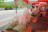 100-04-16 數度造訪梅嶺的螢火蟲:照片 007.jp