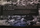 台北探索館:IMG_1545-800.jpg