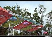 2009-05-01苗栗客家桐花音樂會:DSC_7111.jpg