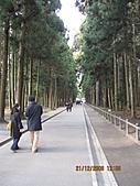 2008 大內宿,奧之細道,松島,東京:IMG_0283.jpg