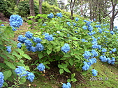 2006 立山黑部,合掌村,馬籠宿:PICT0066.JPG