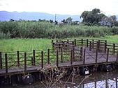 2005 花東小旅行:PICT0025.JPG