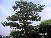 2006 立山黑部,合掌村,馬籠宿:PICT0043.JPG