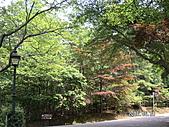 2006 立山黑部,合掌村,馬籠宿:PICT0118.JPG