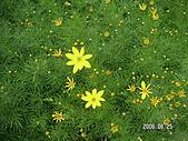 2006 立山黑部,合掌村,馬籠宿:PICT0102.JPG