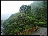 20090908 La new日本東北奧入瀨day4:P1050926.jpg
