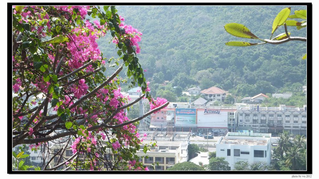 20121104-華欣曼谷:DSCF3342.jpg