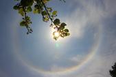 太陽光環~日暈:IMG_9085日暈.JPG