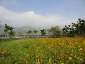 美濃^^自然景觀:DSC03293.JPG