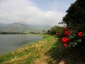 美濃^^自然景觀:DSC03331.JPG