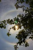 太陽光環~日暈:IMG_9100日暈.JPG