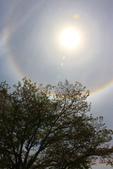 太陽光環~日暈:IMG_9227日暈.JPG