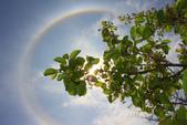 太陽光環~日暈:IMG_9063日暈.JPG