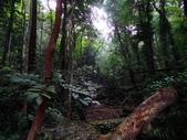 美濃^^自然景觀:DSC03203.JPG