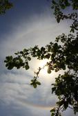 太陽光環~日暈:IMG_9097日暈.JPG