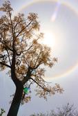 太陽光環~日暈:IMG_9313日暈.JPG