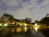 夜景 原生植物園:DSC06644.JPG