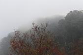 山河變色:IMG_6642.JPG